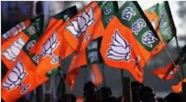 BJP Jhanda